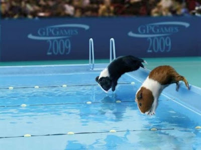 FUNNY PICTURES: ANIMAL SPORTS