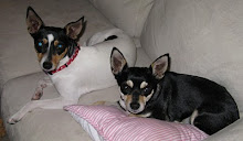 Roxy and Peanut