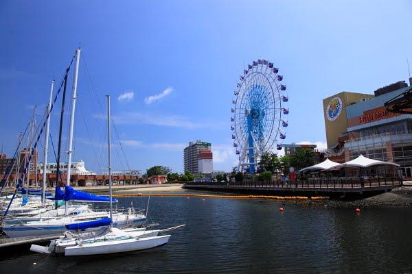 信州四季彩便り: 静岡市清水区へ