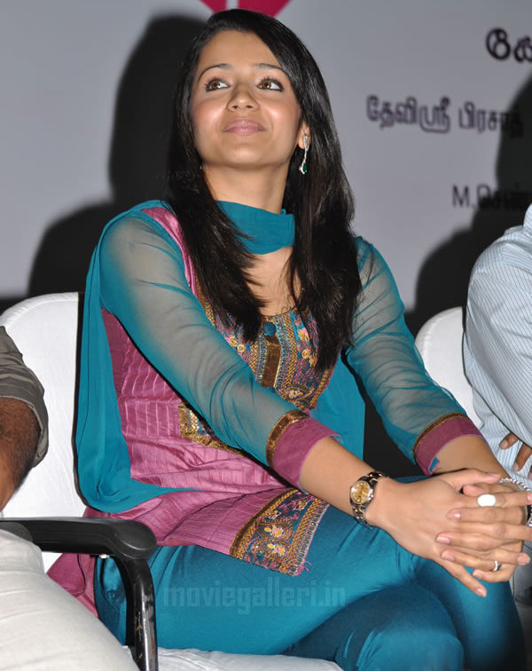 film actors and actress photo gallery cute actress trisha in sexy