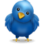 Tweet Tweet!