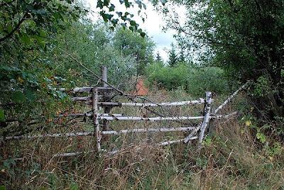 Tihomir Stojanović: Stara drvena ograda i kuca okruzena drvecem