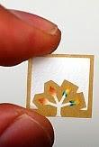 Un chip di carta per svelare le malattie in pochi secondi