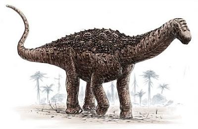 Sauropoda Dinosaur