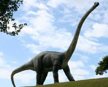 Sauropod Model