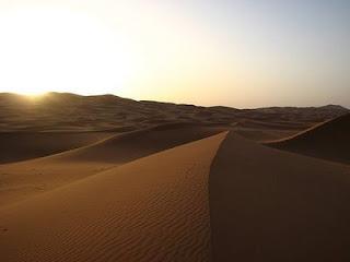 Tempat paling panas di dunia diduduki oleh gurun sahara. gurun sahara