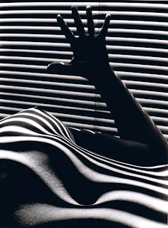 Clergue.Zebrees