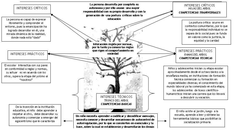 """ENSAYO """"REFLEXIONES SOBRE COMPETENCIAS Y FORMACIÓN UNIVERSITARIA"""""""