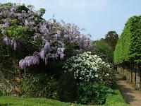 Corsham Court garden