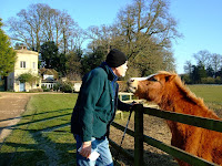 Horsing about with the locals