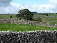 Fields around Over Haddon
