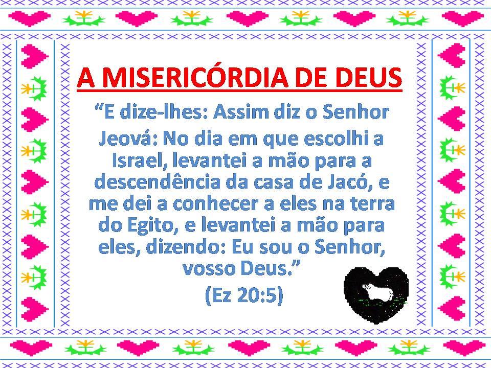 flores no jardim de deus : flores no jardim de deus:quinta-feira, 27 de janeiro de 2011