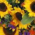 Organic florist creates seasonal beauty for Miss Bristol 2010