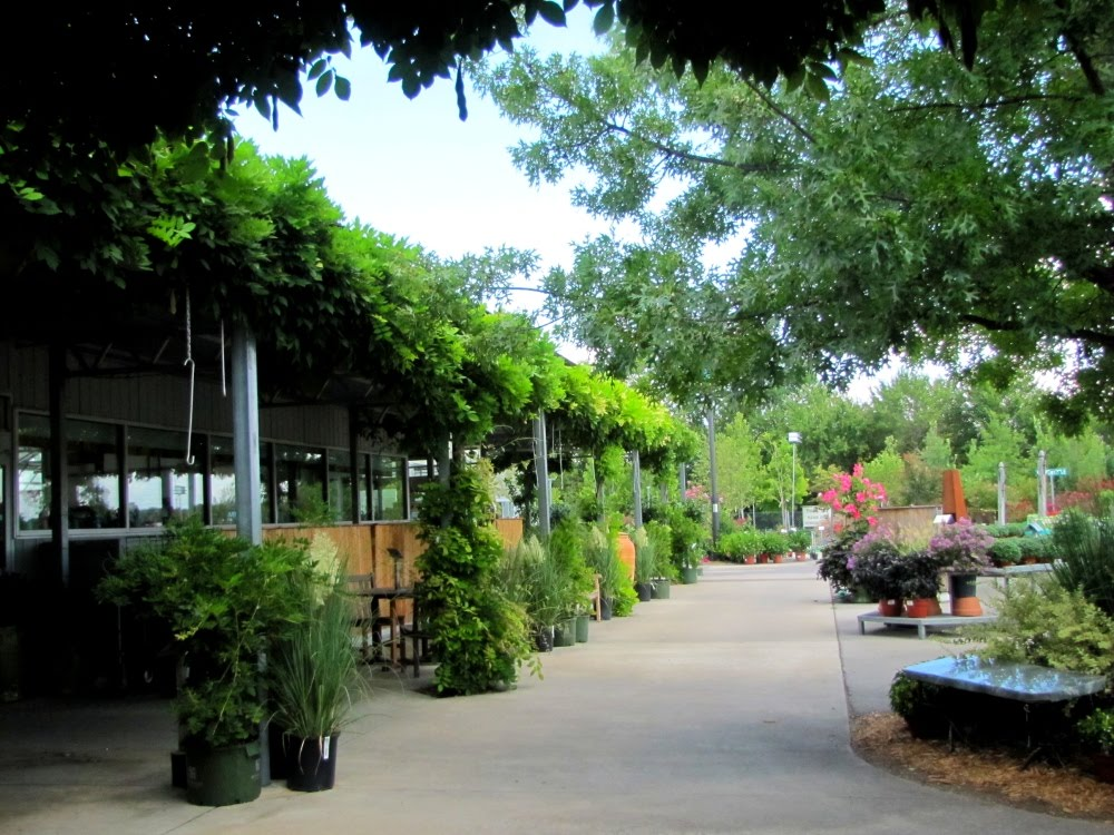 Tulsa Has A Number Of Open Air Markets Where Plants And Gardening Supplies Are Sold My Favorite Is Southwood Landscape Nursery At 91st Street South