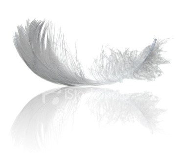 http://3.bp.blogspot.com/_kYGipnHYS9E/TDQMWAfwBjI/AAAAAAAAATg/Gx4T-DOVvgI/s1600/ist2_5997542-light-feather-reflection.jpg