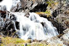 Fin fotoeffekt med slørete vann