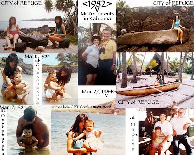 Hawaiian and Florida Beaches