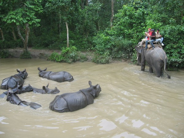Visit Chitwan is one of the finest national Parks in Asia Nepal, Enjoy Nepal Climate, Palpa Climate, Tansen, Dharooga Nepal, Chaapani Nepal, Kharekhola Nepal