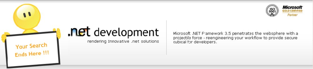 .Net Outsourcing Services India