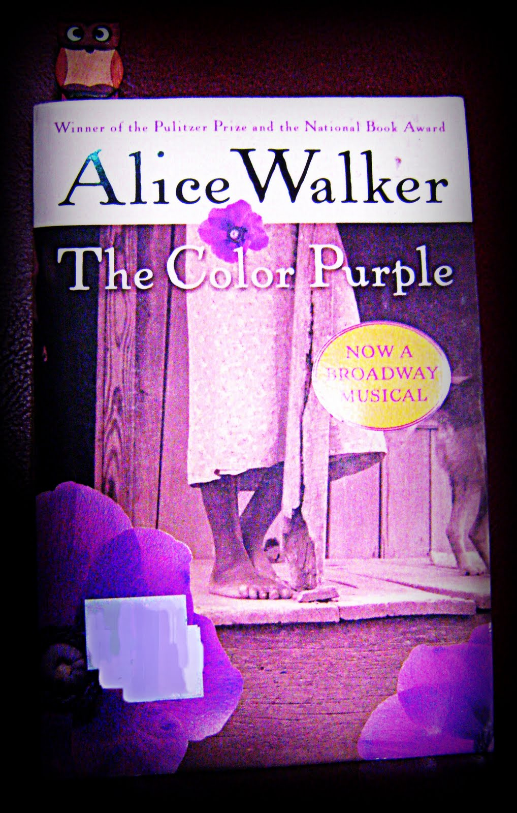 a look at life in the novel the color purple by alice walker The life and work of alice walker alice walker is one of the most famous and beloved writers of our time, and this is largely due to the novel the color purple.