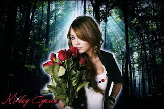 Miley Cyrus Who Owns My Heart MP3 Lyrics
