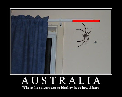 Funny Picture Captions Health_bar_spider