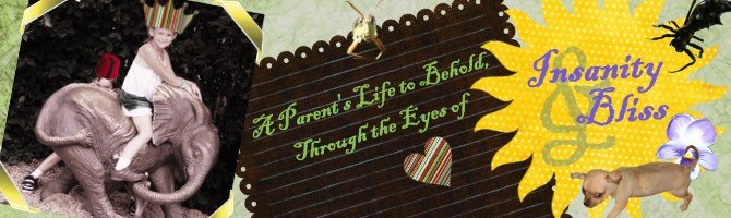 A Parent's Life to Behold, Through the Eyes of Insanity-n-Bliss...