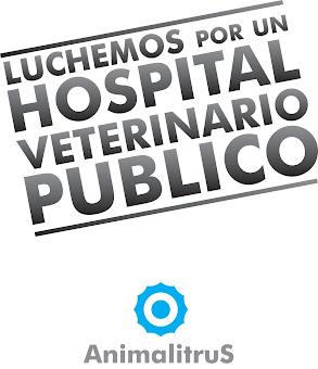 """Proyecto """"Hospital Veterinario Público"""" Argentina"""