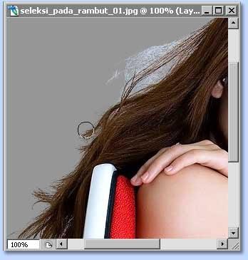 tutorial photoshop untuk membuat seleksi dengan channel dan layer mask, gambar 7