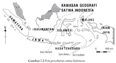 hewan yang termasuk daerah oriental atau Indonesia barat, antara lain