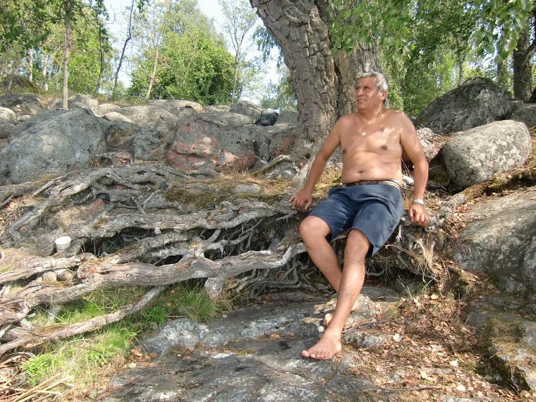Sentado en la raíz de un árbol milenario, junto al Mälaren