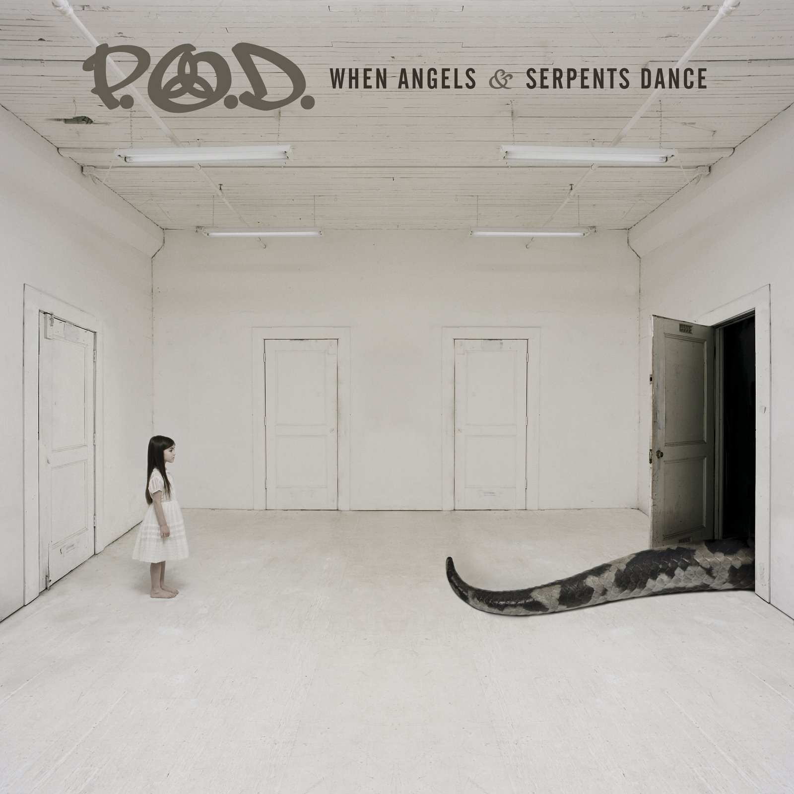 P.O.D. - When Angels And Serpents Dance 2008