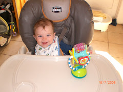 High Chair Mania