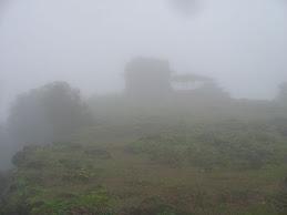 Shankaracharya's Peeta