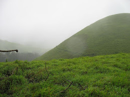 Dense forest of kudremukh -2008