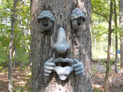 Tree Face Powhatan, Va