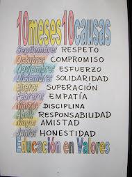 10 MESES 10 CAUSAS