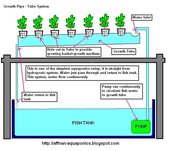 Affnan S Aquaponics Growth Tube System Nft