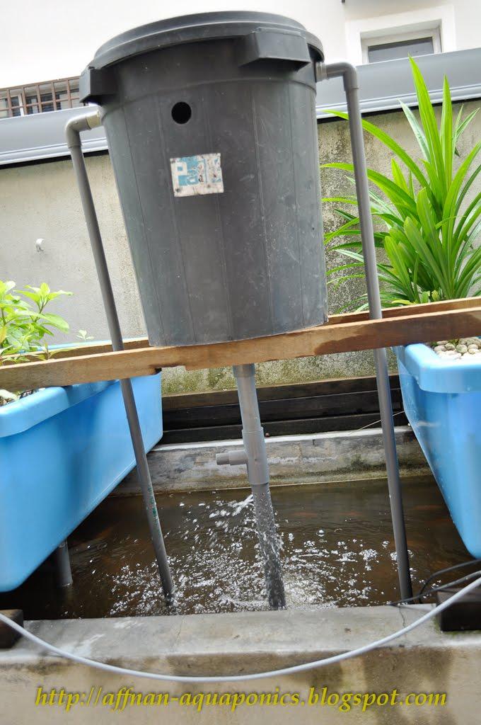 Affnan 39 s aquaponics siphon barrel a just for fun project for Aquaponics aeration