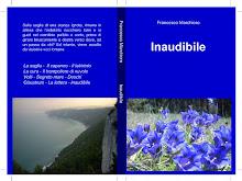"""Il mio nuovo romanzo """"Inaudibile"""""""