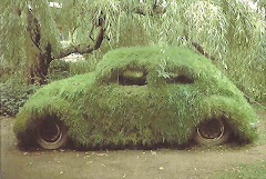 a rolling VW gathers no moss