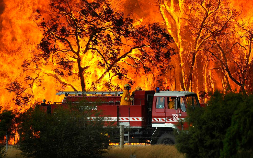 art and architecture  mainly  australian bushfires in art iii