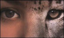 Médiathèque animale : à découvrir, 1000 livres et des vidéos sur le thème des animaux.