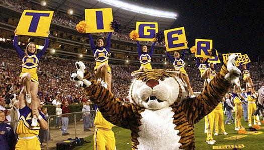 Lsu football pictures
