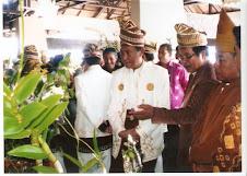 H.Rudi Ariffin, Gubernur Kal-Sel