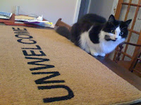 Unwelcome mat from PayPal - not even the cat likes it