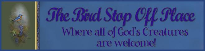 Bird Stop Off Place