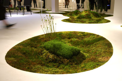MOSS Garden Indoor - Home Gardening