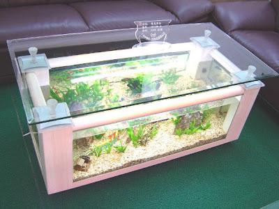 Aqua Coffee Table - Interior Home design
