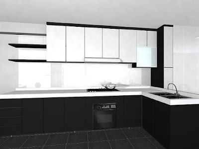 Black and White Kitchen Design Pictures 2010